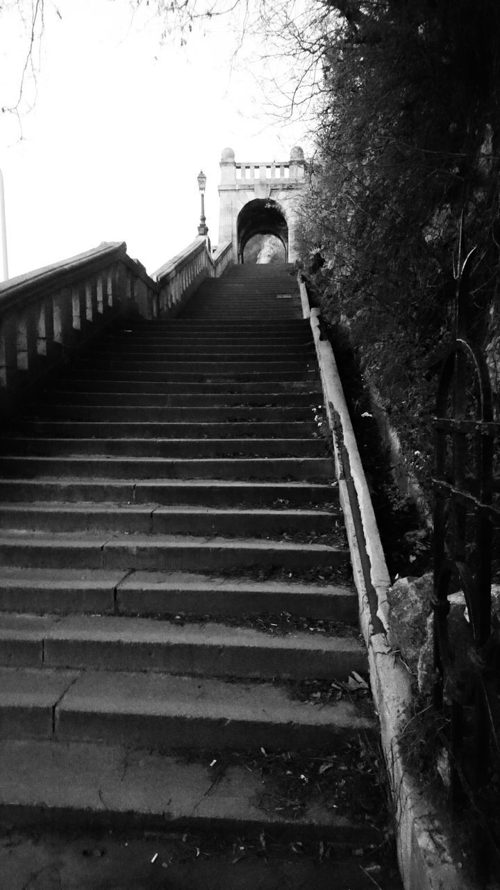 steps, steps and staircases, staircase, railing, stairs, low angle view, the way forward, tree, one person, built structure, outdoors, day, real people, architecture, full length, hand rail, nature, sky, people