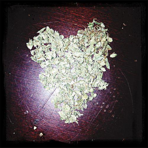 I love marijuana <3 best bc bud!  High Life Girlswhosmokeweed 420 Weed