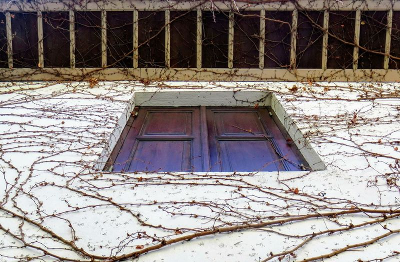 Low angle view of house window during winter