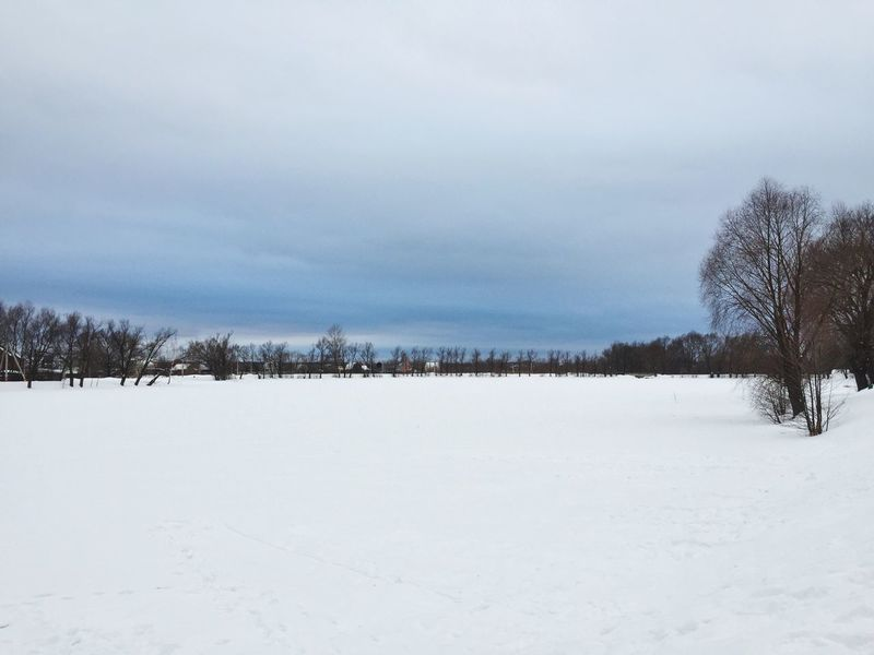 Winter Snow Cold Temperature Weather Nature Tree Beauty In Nature Tranquil Scene Scenics Tranquility Outdoors Sky Landscape Bare Tree Day No People Россия природароссии Природа озеро зима Lake Lake View Cold