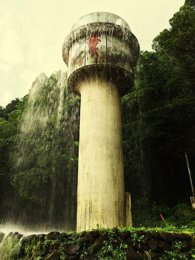 噴き出しているのは飲料水。家庭で使う水の量が増えたら、こんなに噴き出さない。運良く噴き出している瞬間が見れた!水がキレイなので、ホタルが山に帯を作るらしい。 Rain Water Miyazaki