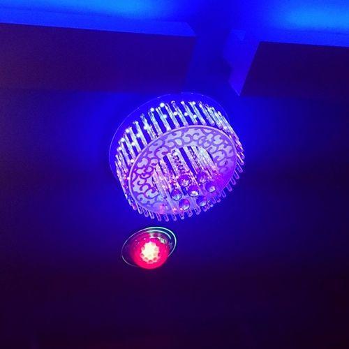 Lamp..