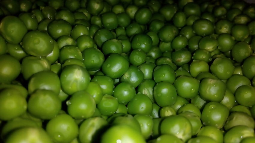 Backgrounds Full Frame Green Color No People Close-up Food Freshness Large Group Of Objects Indoors  Nature Day Nature Pulses Green Peas Green Pea Healthy Eating Freshness