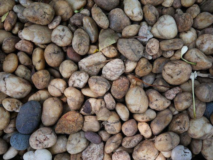 Stone gravel under foot in the garden.