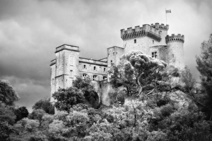 Fortified Casttle Avignon Middle Age Provence Architecture Black And White Building Exterior Built Structure Castle Chateau De La Barben Cloud - Sky Day History Low Angle View Nature No People Outdoors Sky Tree