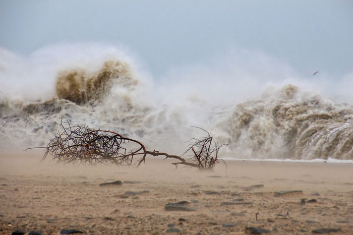 Powerful waves crashing on a beach A Beach Beauty In Nature Branch Coastline Day Driftwood Ireland Nature No People Outdoors Powerful Rough S Sand Scenics Sea Shore Shoreline Sky Stone Storm Walking Around Water