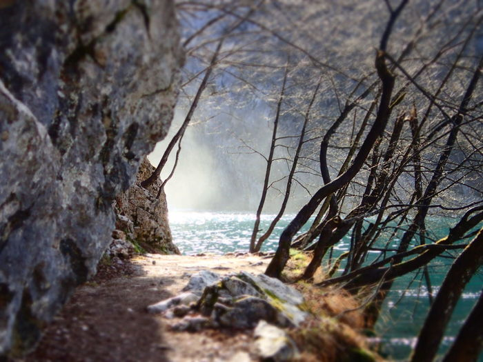 Plitvice Lakes National Park Waterfall Mist Beauty In Nature Lake Mist No People Outdoors Plitvice National Park Plitvicelakes Scenics - Nature Tranquility Tree Water Water Mist Waterfall The Great Outdoors - 2018 EyeEm Awards