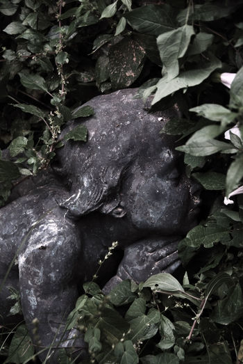 Artistic Beauty Black & White Bronzo Cemetery Photography Close-up Emotions Expressive Sculpture Gestures Marmo