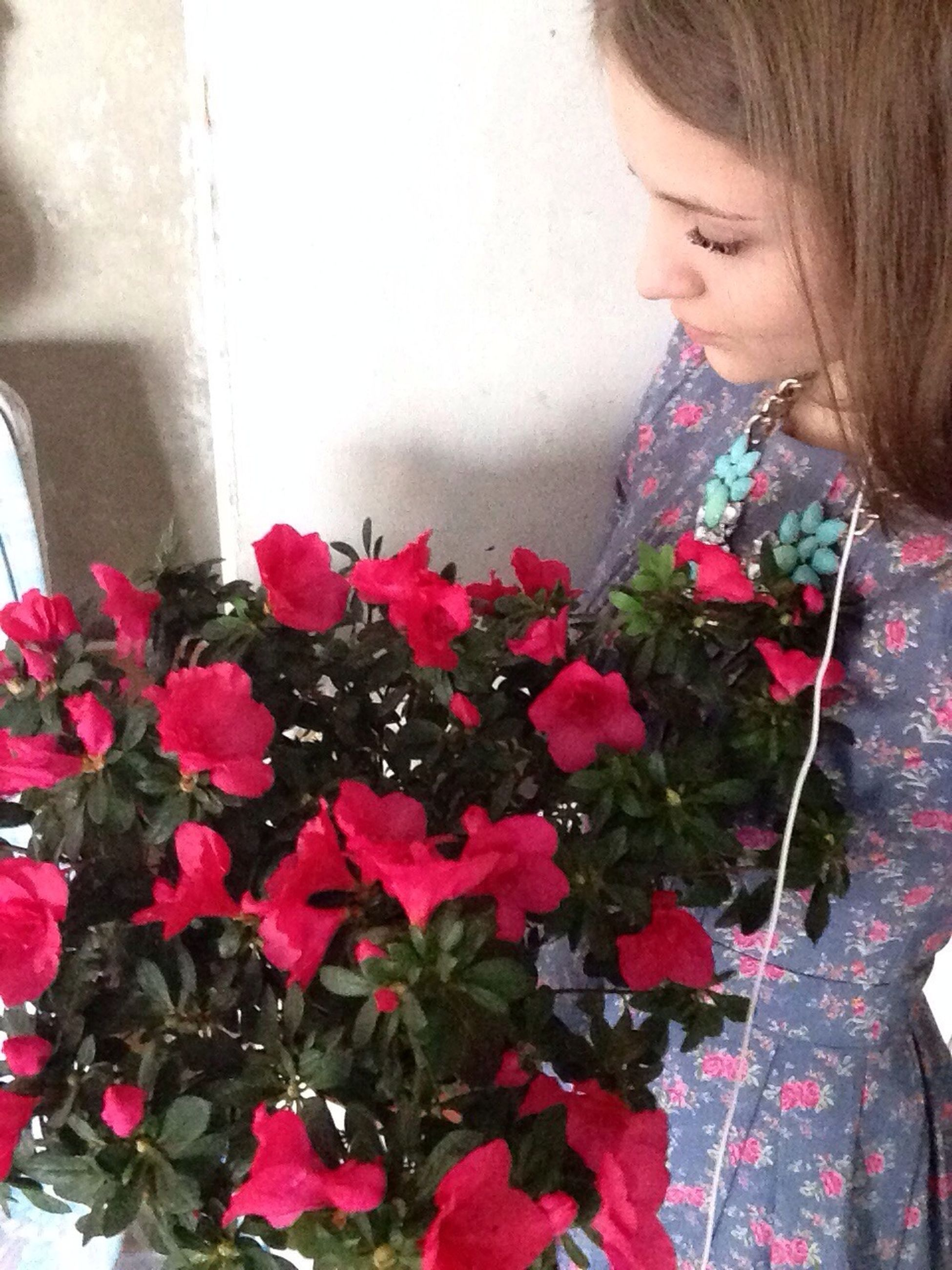 flower, lifestyles, pink color, person, leisure activity, casual clothing, indoors, holding, childhood, red, standing, fragility, freshness, elementary age, wall - building feature, girls, front view, day