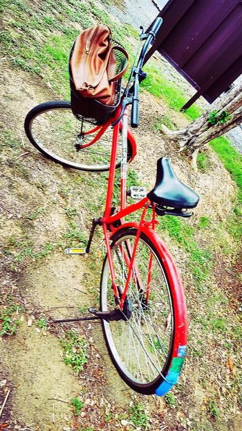 My ride in Ayutthaya Bike Bicycle Ayutthaya | Thailand The Great Outdoors - 2016 EyeEm Awards Thailand Travel Photography Explore Landofsmiles Redbike Redcolour