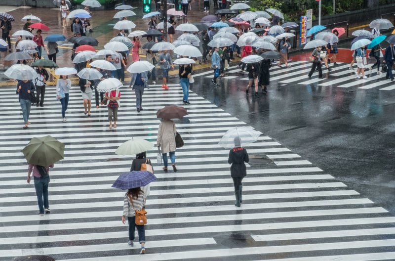 People walking while holding umbrellas at city during rainy season