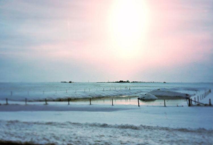 EyeEm Best Edits Iphonephotoacademy Winter Wonderland Winter Eyemphotography EyeEm Best Shots Landscapes With WhiteWall
