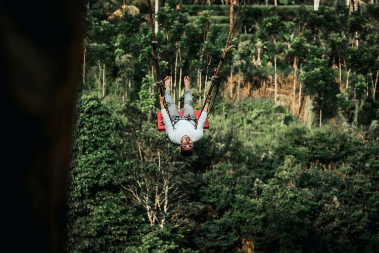 Man hanging on tree trunk in forest