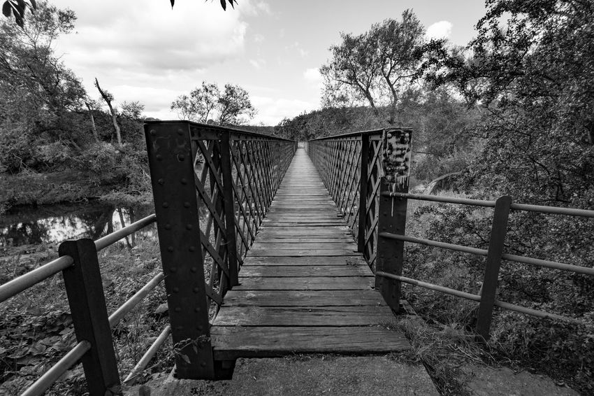 Perspective Walking Blackandwhite Photography Black & White Blackandwhite Nikonphotography Nikon Sky_collection Eye4photography  EyeEm Best Shots Landscape_photography Hikingadventures Sky And Clouds Landscape_photography Railing Architecture Built Structure Plant Tree The Way Forward Direction Nature Sky Bridge Connection Wood - Material Outdoors