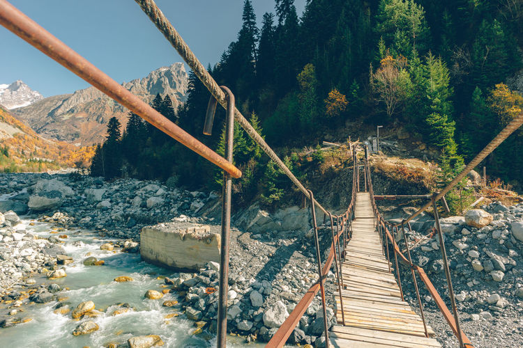 Footbridge over lake in forest