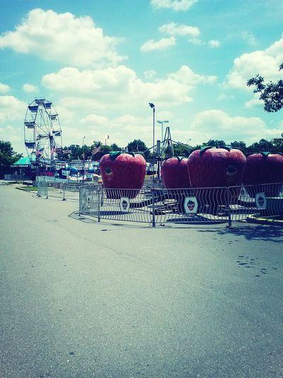 Carnival Summer Woo!