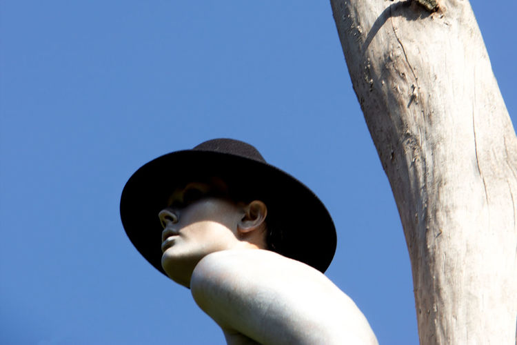 Low angle view of person against tree against clear blue sky