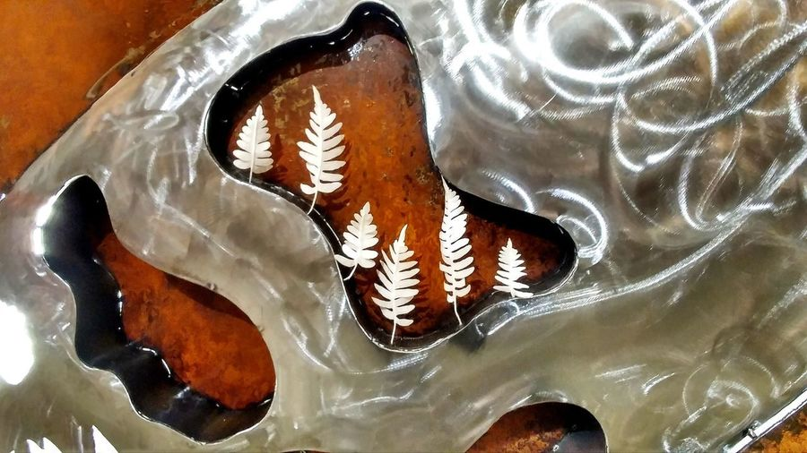 High angle view of fish swimming in water