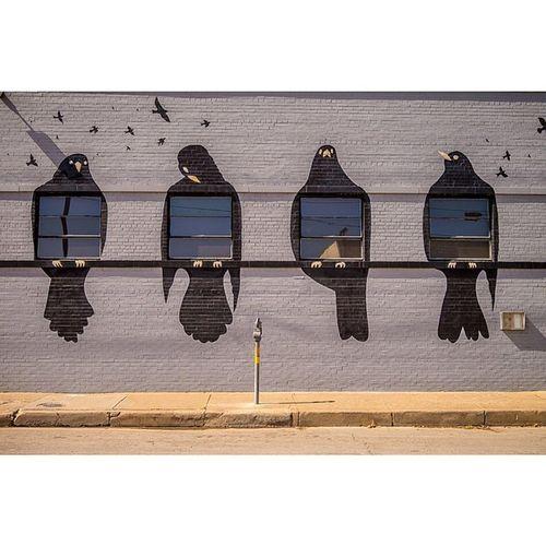 Four Blackbirds Dallas Deepellum Art