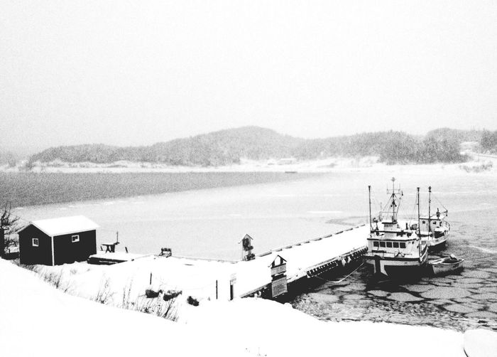 Snowfall - iPhone 4S Winter White By CanvasPop Don Filter IPhoneography AMPt_community