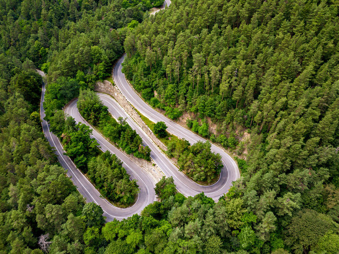 Winding road through the forest, from high mountain pass, in summer time