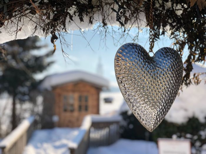 Close-up of heart shape on tree against building
