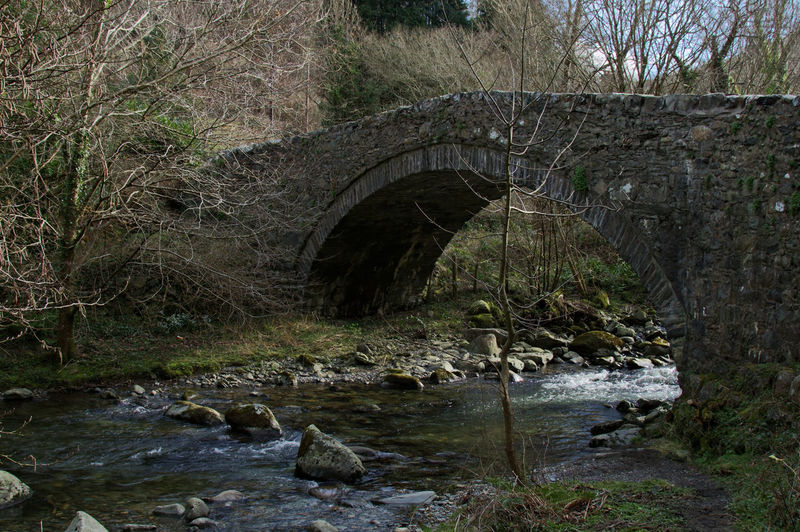 Wales Tree Welsh Countryside Flowing River Forest Flowing Water Water River Arch Bridge Riverbank Riverside Bridge Arch