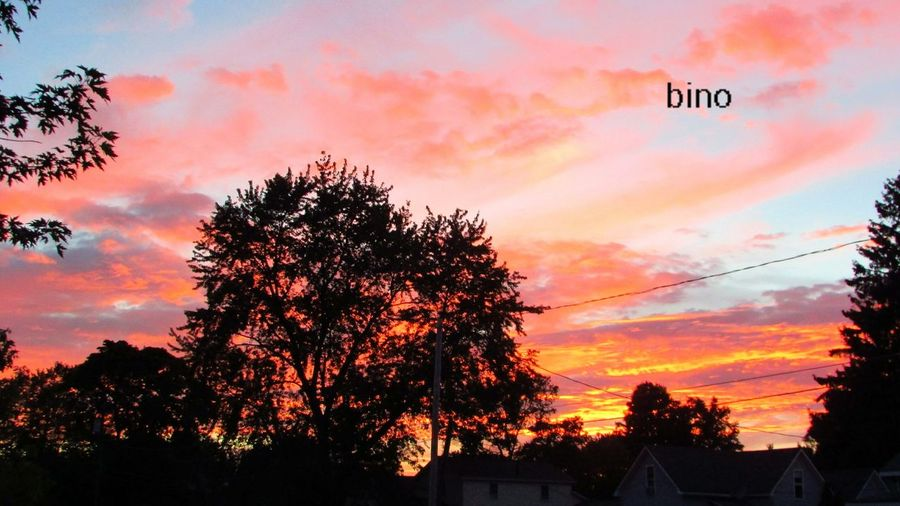 From My Front Porch Sunset Silhouettes Dramatic Sky Beautiful Color Silhouettes Cadillac Michigan