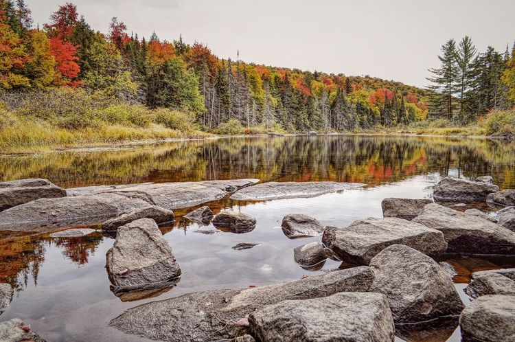 Nature Reflection Autumn Tranquility Beauty In Nature Landscape Multi Colored Autumn Wilderness Natural Parkland Autumn Collection Autumn Colours My Best Photo 2016 Share Your Adventure My View Right Now Nature On Your Doorstep Adirondack Mountains Waterfront Nature At Work Outdoors Beauty In Nature Reflections In The Water Upstate New York Reflection Reflection_collection