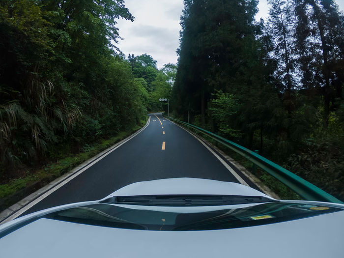 Forest, road, travel China Landscape No People Nature Beauty In Nature Travel Transportation Tree Road Plant Mode Of Transportation Land Vehicle Car Transparent The Way Forward Day on the move Sky Direction Diminishing Perspective Car Point Of View Outdoors Road Trip