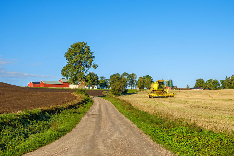Dirt road amidst agricultural field against clear blue sky