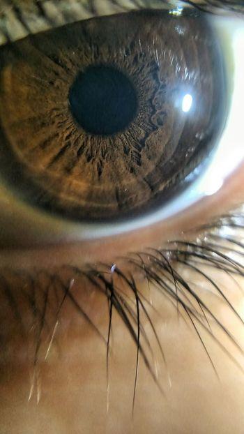 Eyedetails 👁❤
