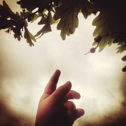 Inspirational Want To  Touch The Sky Baby's Hand Precious