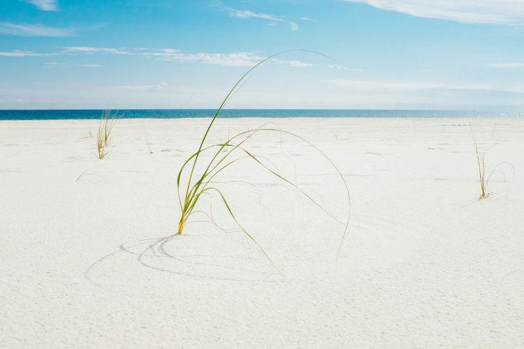 Close-up of sand on beach against sky