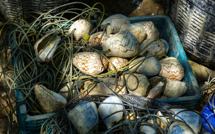 Fishing Net Basket Close-up Day No People Outdoors Shells