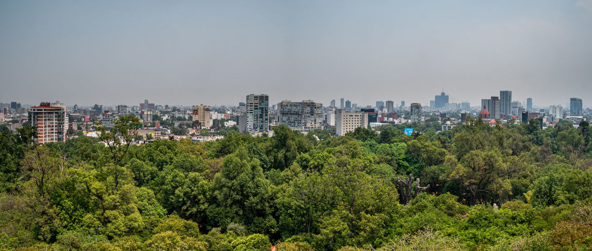 Trees and buildings in city against sky