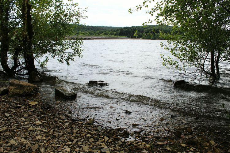 Lake Lakeside Taking Photos Check This Out Nature Water Enjoying Life Photooftheday Shotoftheday 📷