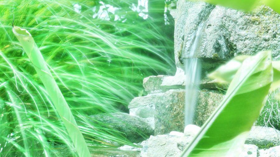 Nature Campagne Water Beauty In Nature Wind Légèreté Fraîcheur