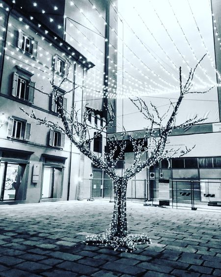 My Best Photo 2015 December Decoration Christmas Tree Night Lights Light Christmas Lights Christmastime Christmas Decorations Eye4photography  Urban Lifestyle Showcase: December Urban Urban Geometry Streetphotography Urban 4 Filter Urbanphotography Bologna, Italy Bologna Enjoying Life