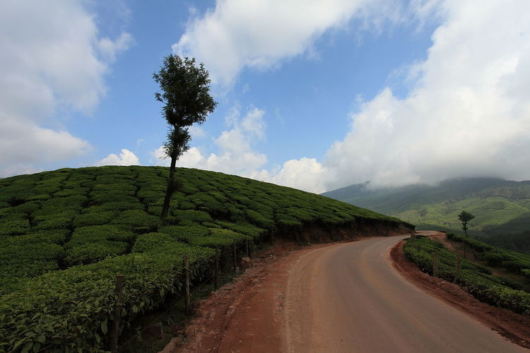 Narrow curved country road along landscape