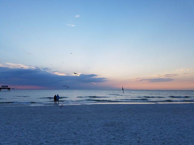 Clearwaterbeach Florida Tampa Travel
