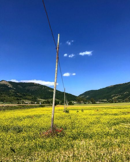 Cable No People Field Blue Tranquil Scene Electricity  Nature Grass Day Tranquility Landscape Outdoors Beauty In Nature Sky Fuel And Power Generation Scenics Mountain Rural Scene Vegetable Popular Photos Eyeemphoto Take A Photo Beauty In Nature Umbria Yellow
