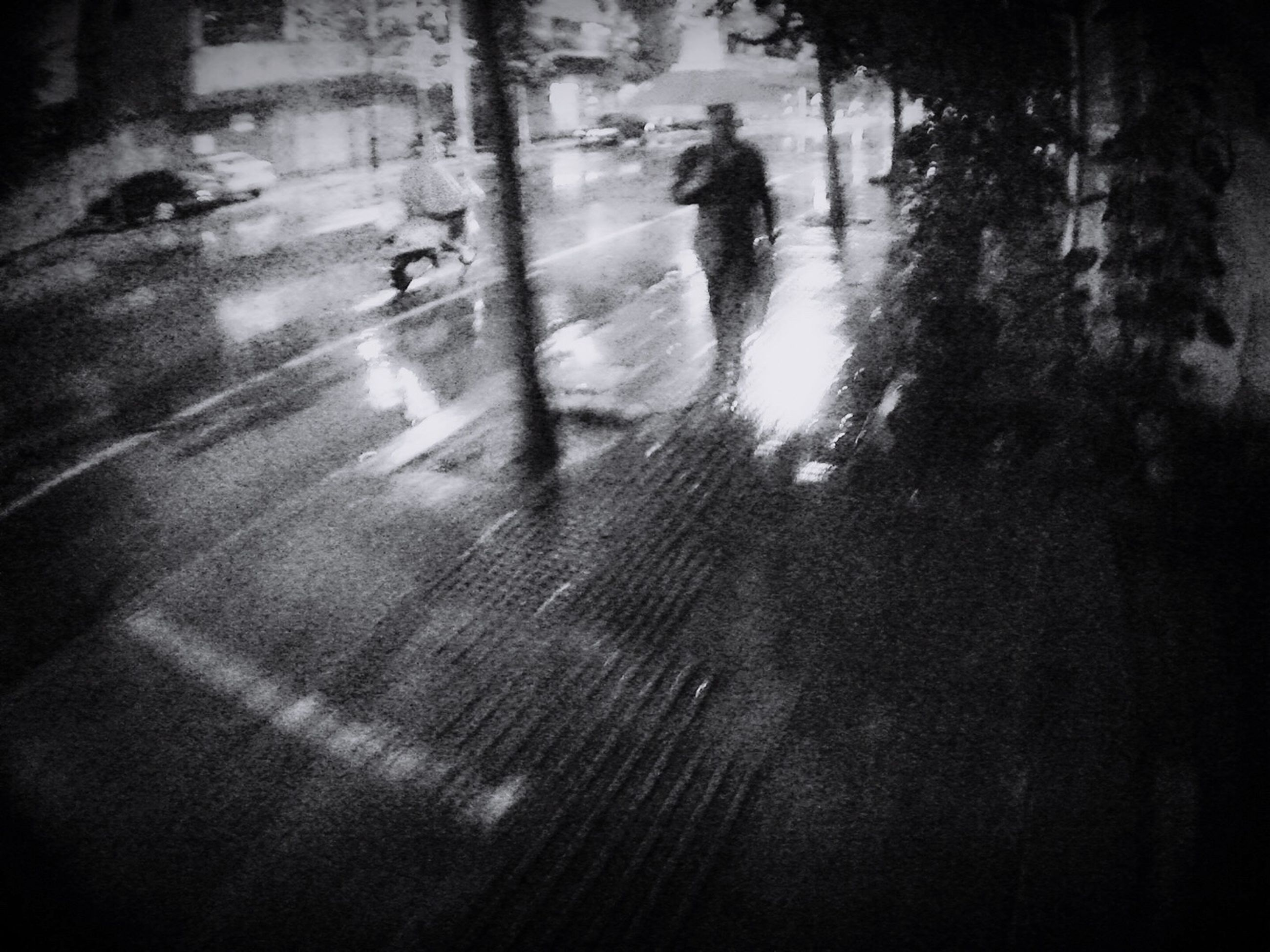 street, walking, unrecognizable person, wet, lifestyles, reflection, water, nature, day, person, outdoors