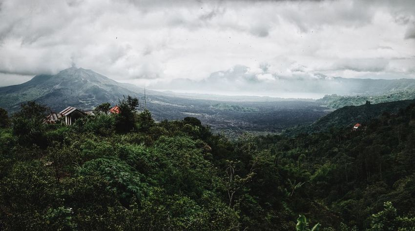 Panorama Landscape Landscape_Collection Landscape_photography Landscapes Nature Nature_collection Nature Photography Green Forest Volcano Crater Bali Cloudy The Great Outdoors With Adobe The Great Outdoors - 2016 EyeEm Awards
