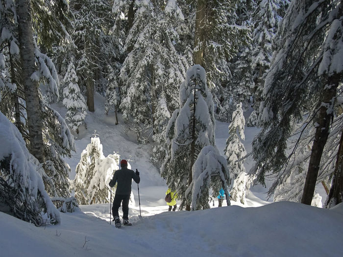 snowshoeing at Cypress in Vancouver Adventure Beauty In Nature Cold Temperature Day Full Length Leisure Activity Lifestyles Men Mountain Nature Outdoors People Real People Scenics Snow Tranquility Tree Two People Warm Clothing Weather Winter Shades Of Winter