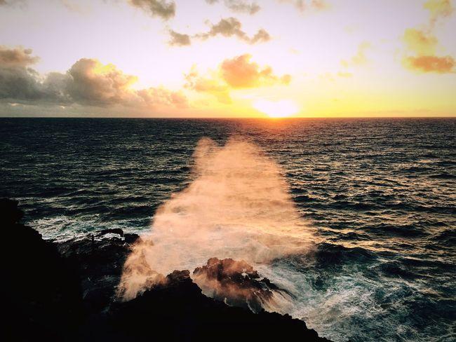 Hawaii Showcase: December Eye4photography  Coastline Water Sunrise Morning Light Morning Sky Scenics EyeEm Seascape Waterspout