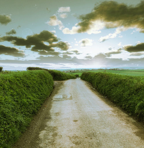 Morning in the countryside Beauty In Nature Cloud - Sky Diminishing Perspective Direction Dirt Dirt Road Environment Field Grass Land Landscape Nature No People Outdoors Plant Road Scenics - Nature Sky The Way Forward Tranquil Scene Tranquility Transportation
