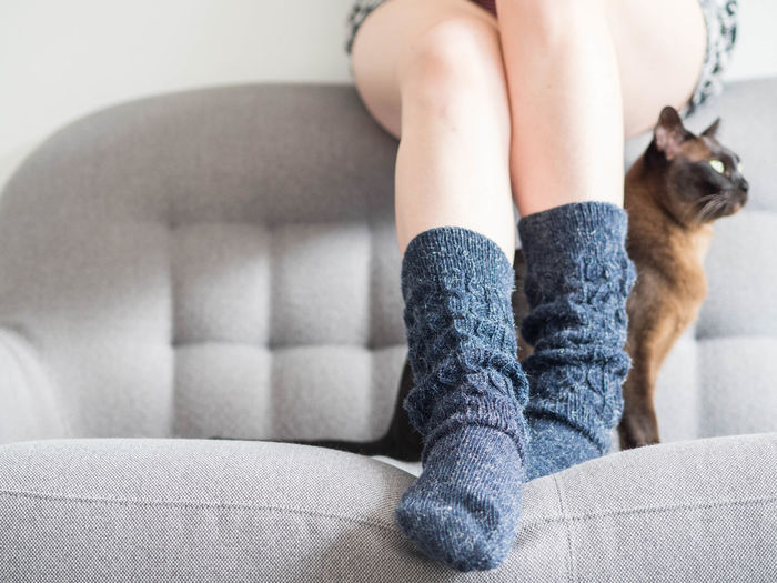 Low section of person with cat on sofa