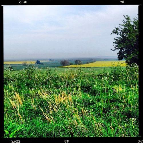 Fieldstothebeach Ukfields Fields