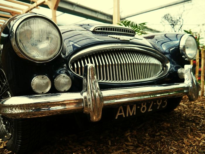 Car Retro Styled Front View Motor Vehicle Transportation Astin Martin Mode Of Transport Land Vehicle Vintage Car Old-fashioned Collector's Car Close-up Outdoors Eyem Gallery Point Of View EyeEm Gallery Low Angle View Old Car Luxury Car Life In Motion Neighborhood Map EyeEmNewHere